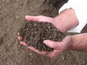 Le JRC a toujours une préférence pour l'exclusion des composts de TMB du statut de produit.