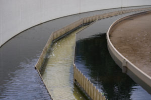 Compostage des boues : le gouvernement veut limiter l'usage des déchets verts
